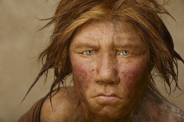 wilma-neanderthal-01_78945_600x450