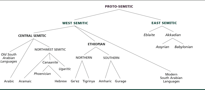 Tree of semitic languages